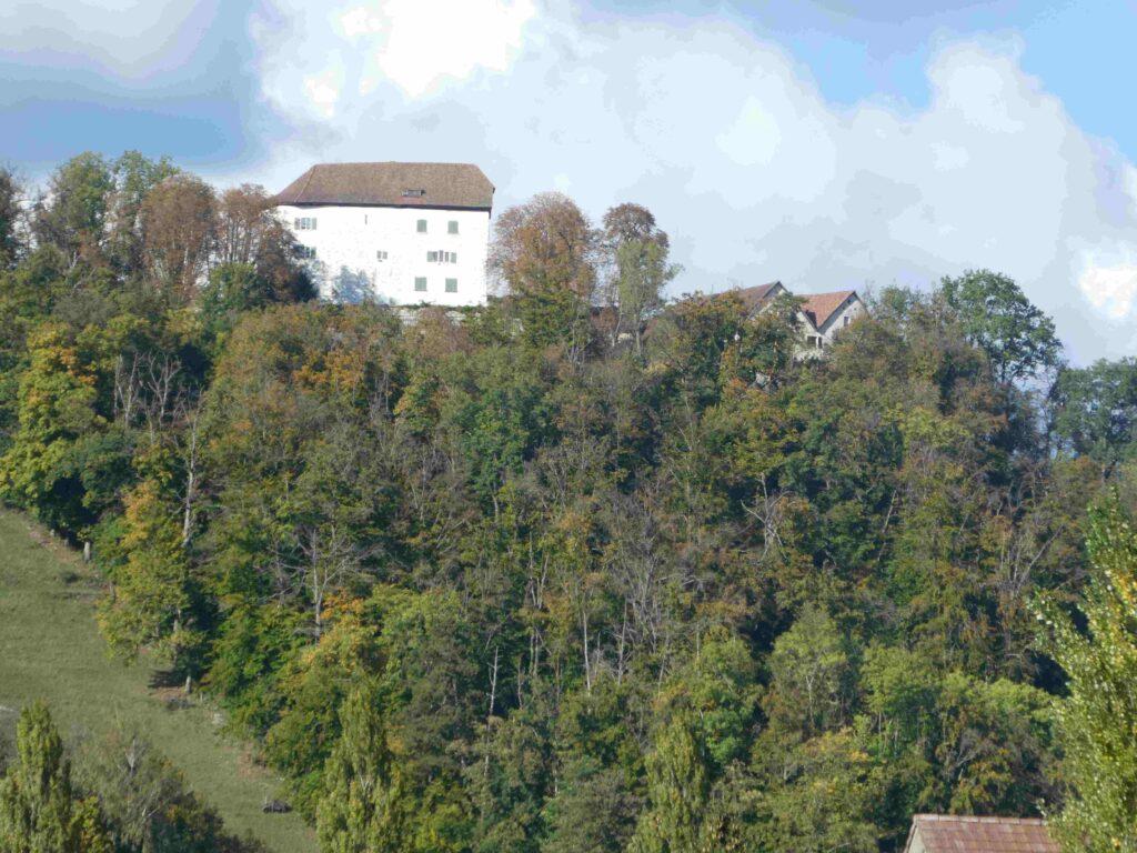 Dieses Bild hat ein leeres Alt-Attribut. Der Dateiname ist Schloss-Brunegg-1024x768.jpg